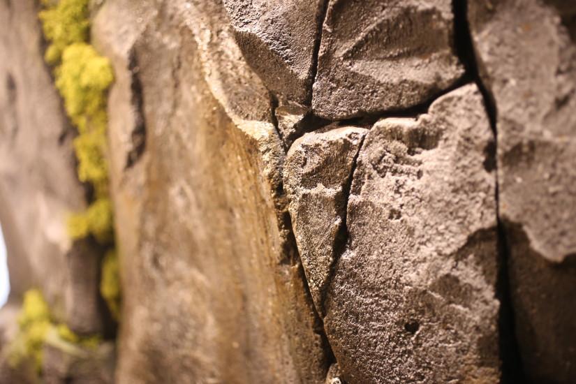 ゼネラルリンク オフィス 行ってきた 岩