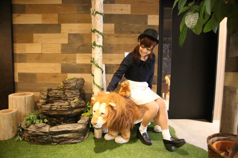 ゼネラルリンク オフィス 行ってきた ライオン